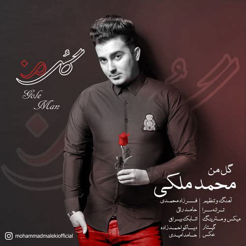 دانلود آهنگ جدید محمد ملکی به نام گل من